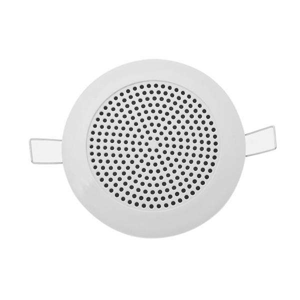 CS300t P.A Ceiling Speakers